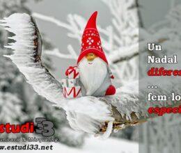 Estudi 33 - Un Nadal diferent ... fem-lo especial!