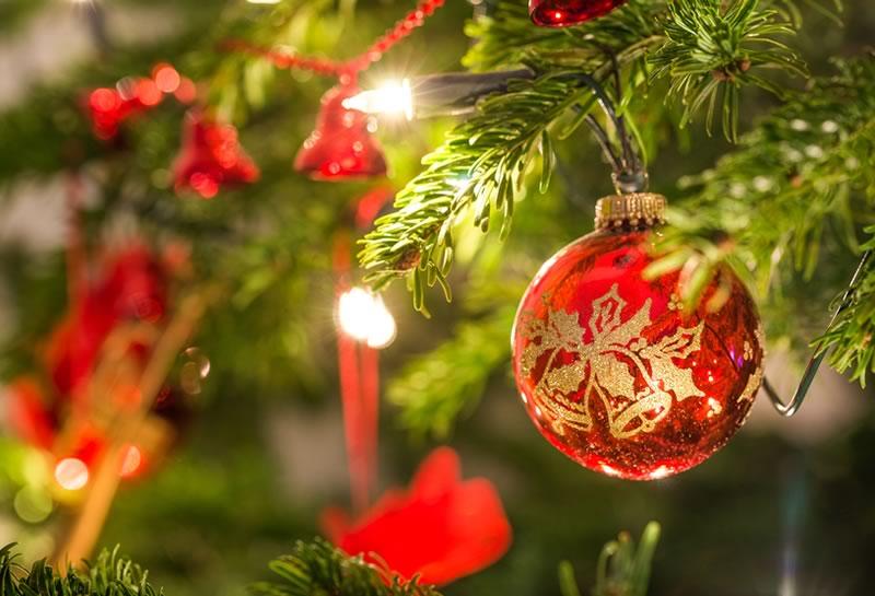 Estudi 33 | La Màgia del Nadal