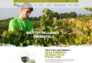 Olis d'Oliva i Vins | Estudi 33